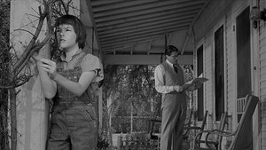 To Kill a Mockingbird - scene 2