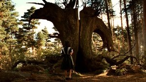 Pan's Labyrinth - scene 15