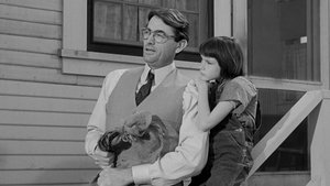 To Kill a Mockingbird - scene 3