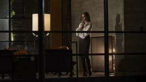 Nocturnal Animals - scene 16