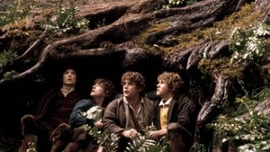 The Lord of the Rings: The Fellowship of the Ring - scene 25