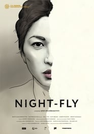 Night-Fly
